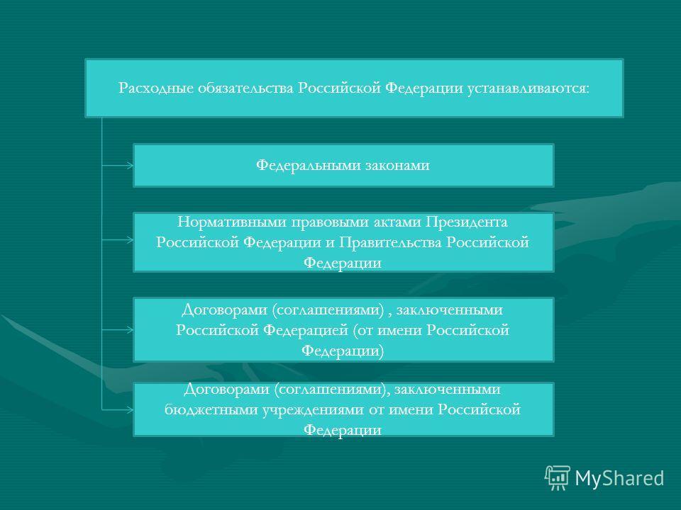 Расходные обязательства Российской Федерации устанавливаются: Федеральными законами Нормативными правовыми актами Президента Российской Федерации и Правительства Российской Федерации Договорами (соглашениями), заключенными Российской Федерацией (от и