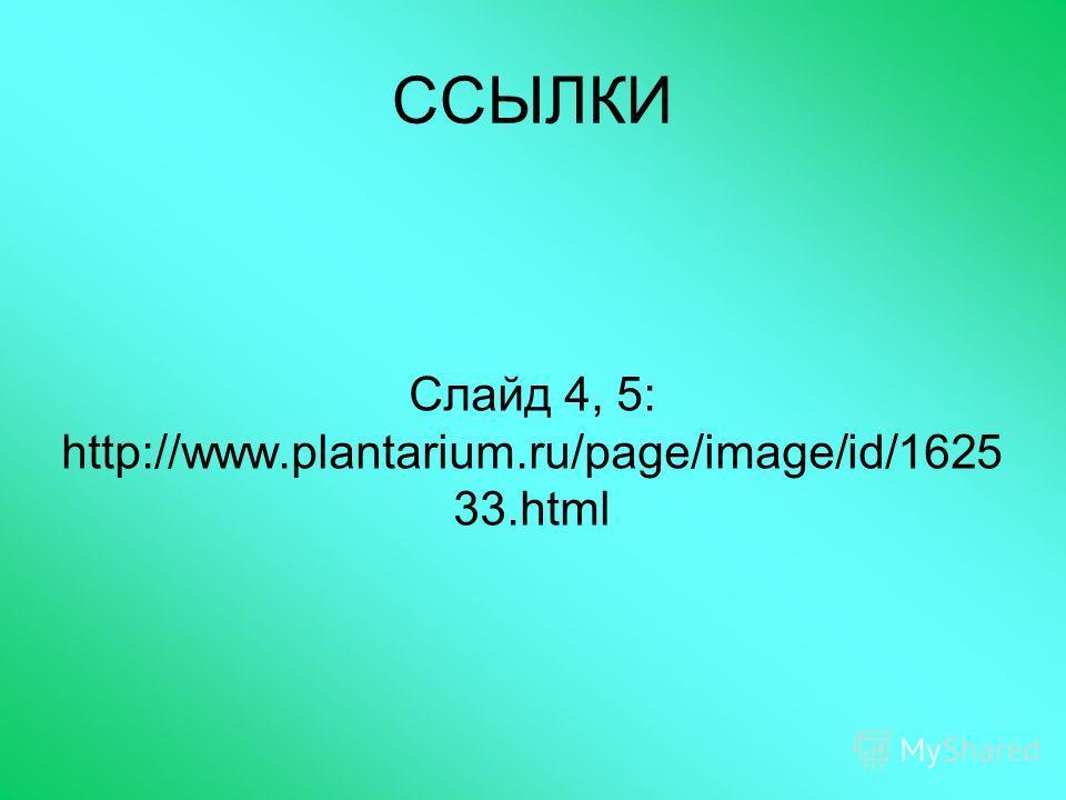 ССЫЛКИ Слайд 4, 5: http://www.plantarium.ru/page/image/id/1625 33.html