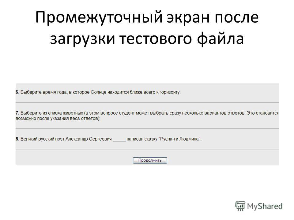 Промежуточный экран после загрузки тестового файла