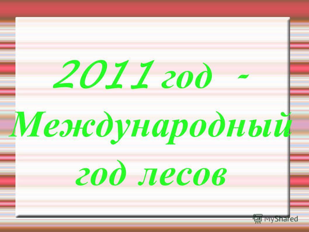 2011 год - Международный год лесов
