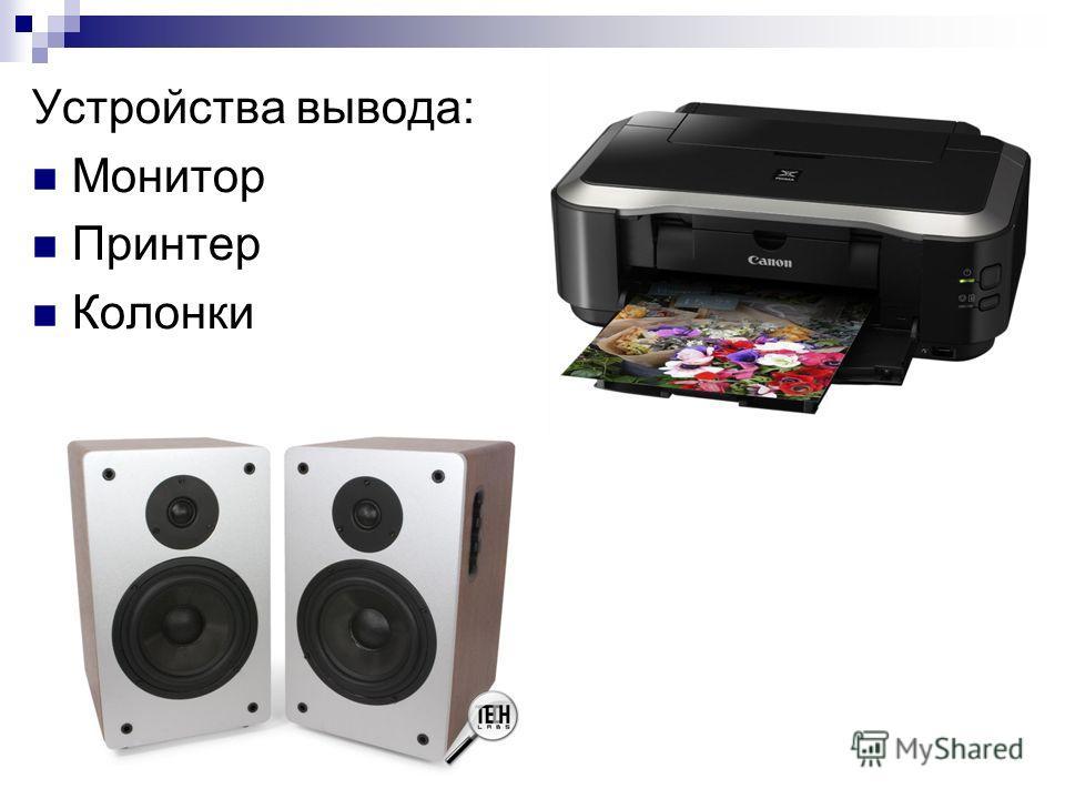 Устройства вывода: Монитор Принтер Колонки