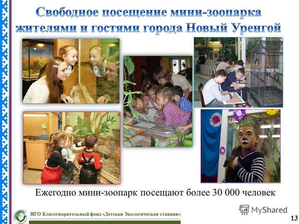Ежегодно мини-зоопарк посещают более 30 000 человек НГО Благотворительный фонд «Детская Экологическая станция» 13