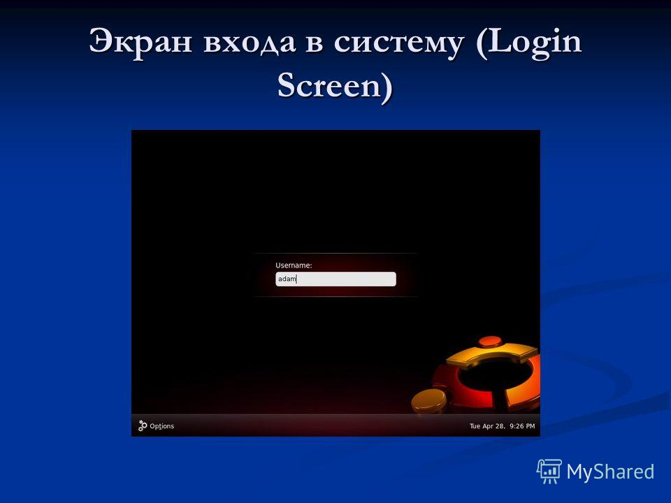Экран входа в систему (Login Screen)