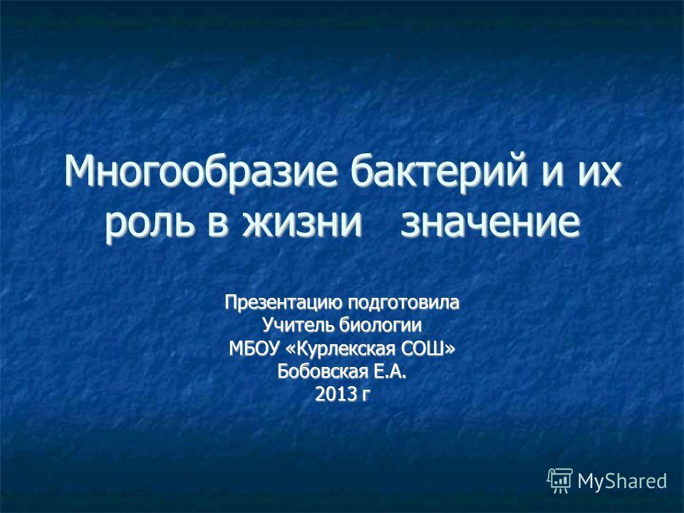 Многообразие бактерий и их роль в жизни значение Презентацию подготовила Учитель биологии МБОУ «Курлекская СОШ» Бобовская Е.А. 2013 г