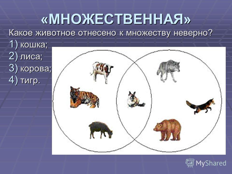 «МНОЖЕСТВЕННАЯ» Какое животное отнесено к множеству неверно? 1) кошка; 2) лиса; 3) корова; 4) тигр.