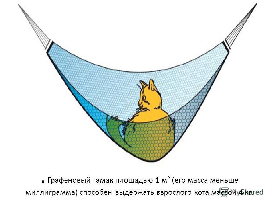 . Графеновый гамак площадью 1 м 2 (его масса меньше миллиграмма) способен выдержать взрослого кота массой 4 кг.