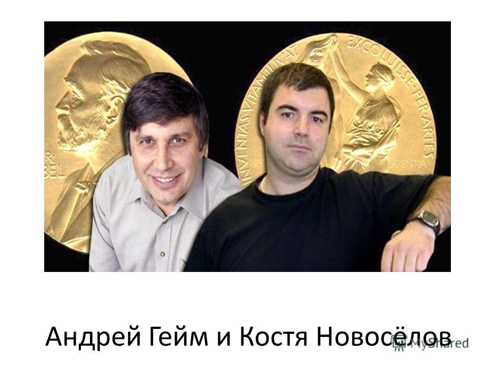 Андрей Гейм и Костя Новосёлов