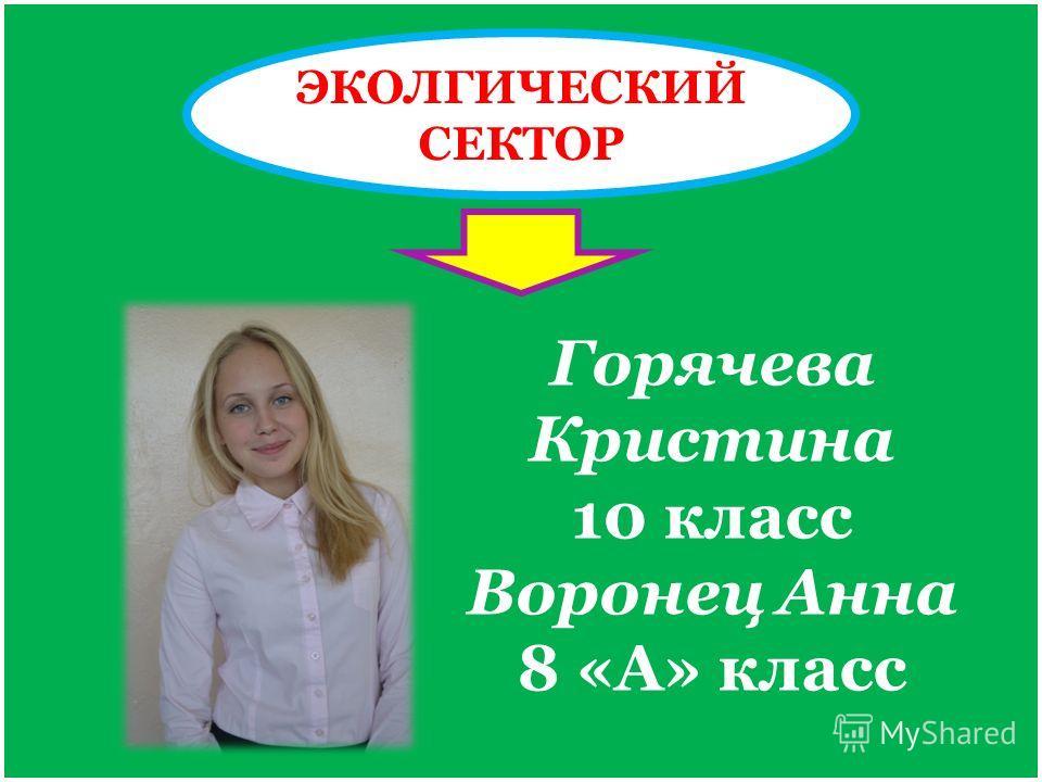 ЭКОЛГИЧЕСКИЙ СЕКТОР Горячева Кристина 10 класс Воронец Анна 8 «А» класс