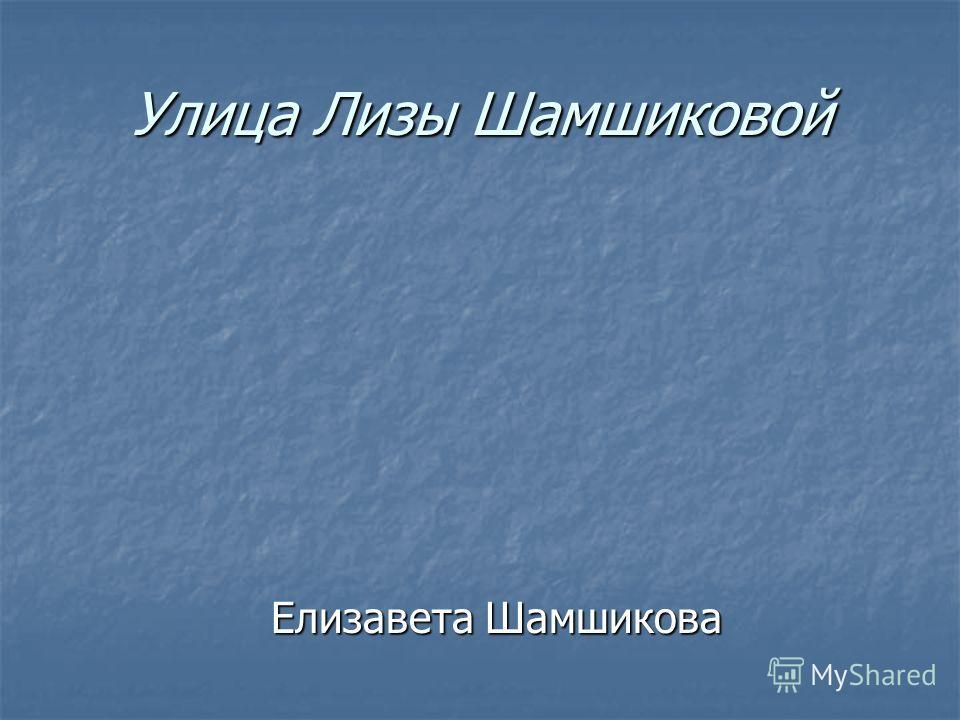 Улица Лизы Шамшиковой Елизавета Шамшикова Елизавета Шамшикова