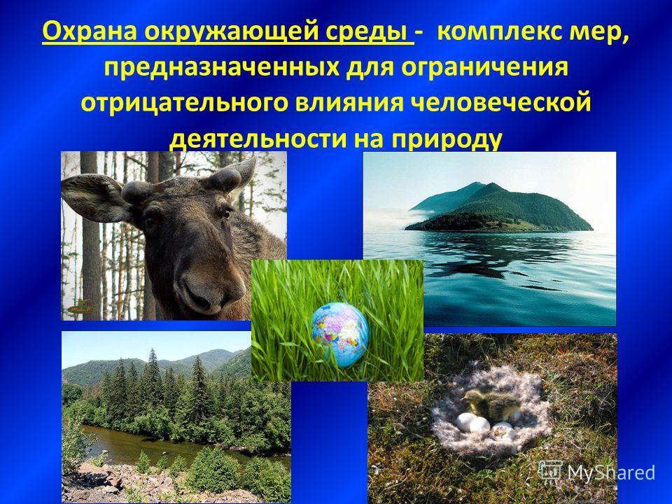 Охрана окружающей среды - комплекс мер, предназначенных для ограничения отрицательного влияния человеческой деятельности на природу