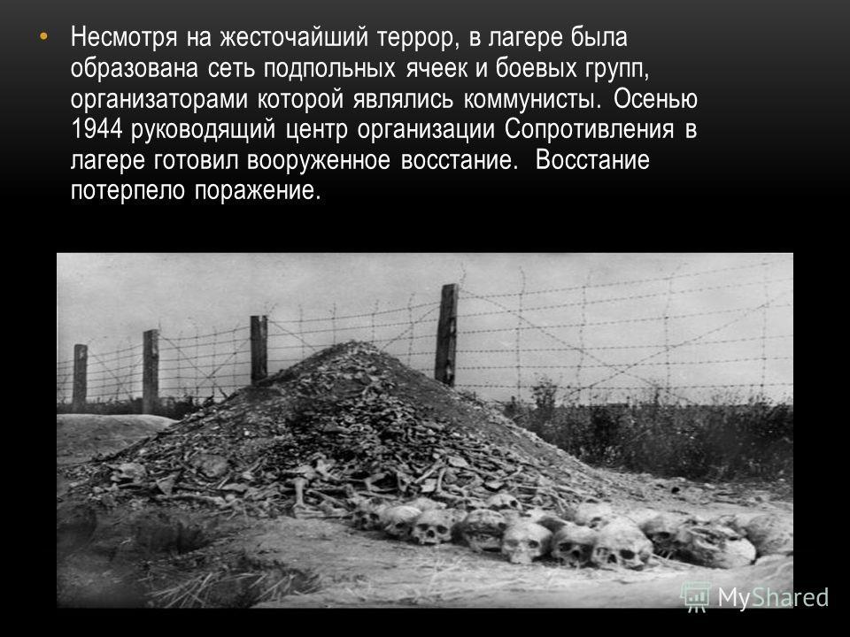 Несмотря на жесточайший террор, в лагере была образована сеть подпольных ячеек и боевых групп, организаторами которой являлись коммунисты. Осенью 1944 руководящий центр организации Сопротивления в лагере готовил вооруженное восстание. Восстание потер