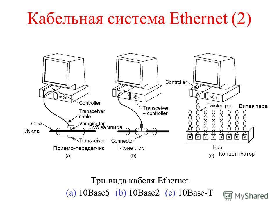 Кабельная система Ethernet (2) Три вида кабеля Ethernet (a) 10Base5 (b) 10Base2 (c) 10Base-T Т-конектор Приемо-передатчик Жила Витая пара Зуб вампира Концентратор