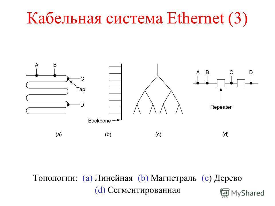 Кабельная система Ethernet (3) Топологии: (a) Линейная (b) Магистраль (c) Дерево (d) Сегментированная