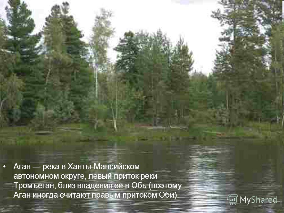 Аган река в Ханты-Мансийском автономном округе, левый приток реки Тромъеган, близ впадения её в Обь (поэтому Аган иногда считают правым притоком Оби).