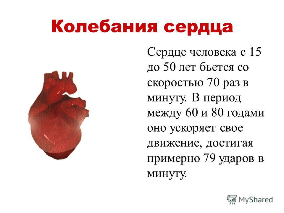 Колебания сердца Сердце человека с 15 до 50 лет бьется со скоростью 70 раз в минуту. В период между 60 и 80 годами оно ускоряет свое движение, достигая примерно 79 ударов в минуту.