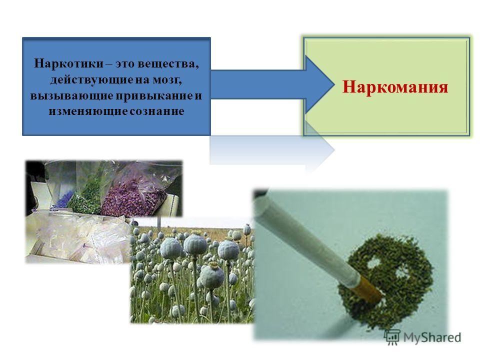 Наркомания Наркотики – это вещества, действующие на мозг, вызывающие привыкание и изменяющие сознание