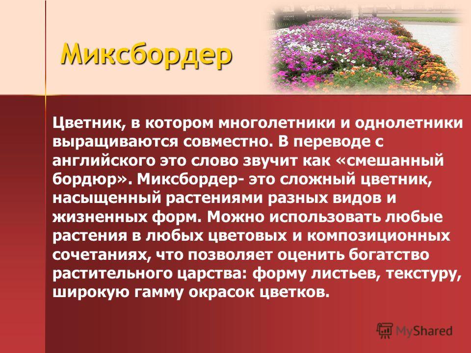 Миксбордер Цветник, в котором многолетники и однолетники выращиваются совместно. В переводе с английского это слово звучит как «смешанный бордюр». Миксбордер- это сложный цветник, насыщенный растениями разных видов и жизненных форм. Можно использоват