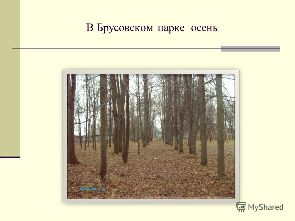 В Брусовском парке осень
