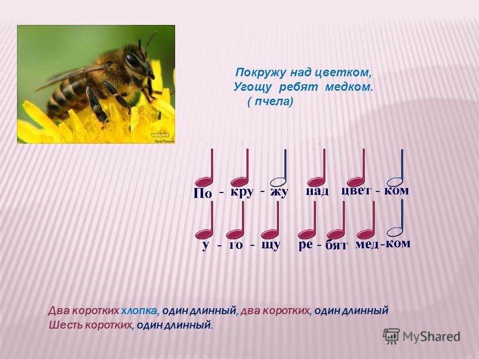 Покружу над цветком, Угощу ребят медком. ( пчела) Два коротких хлопка, один длинный, два коротких, один длинный Шесть коротких, один длинный.