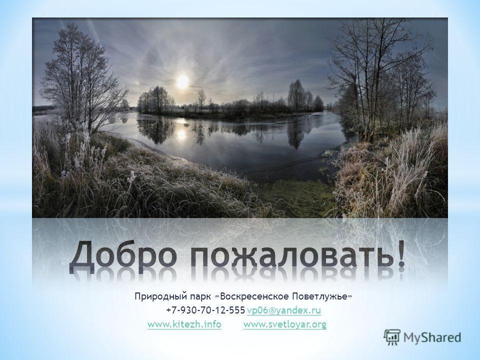 Природный парк «Воскресенское Поветлужье» +7-930-70-12-555 vp06@yandex.ruvp06@yandex.ru www.kitezh.infowww.svetloyar.org