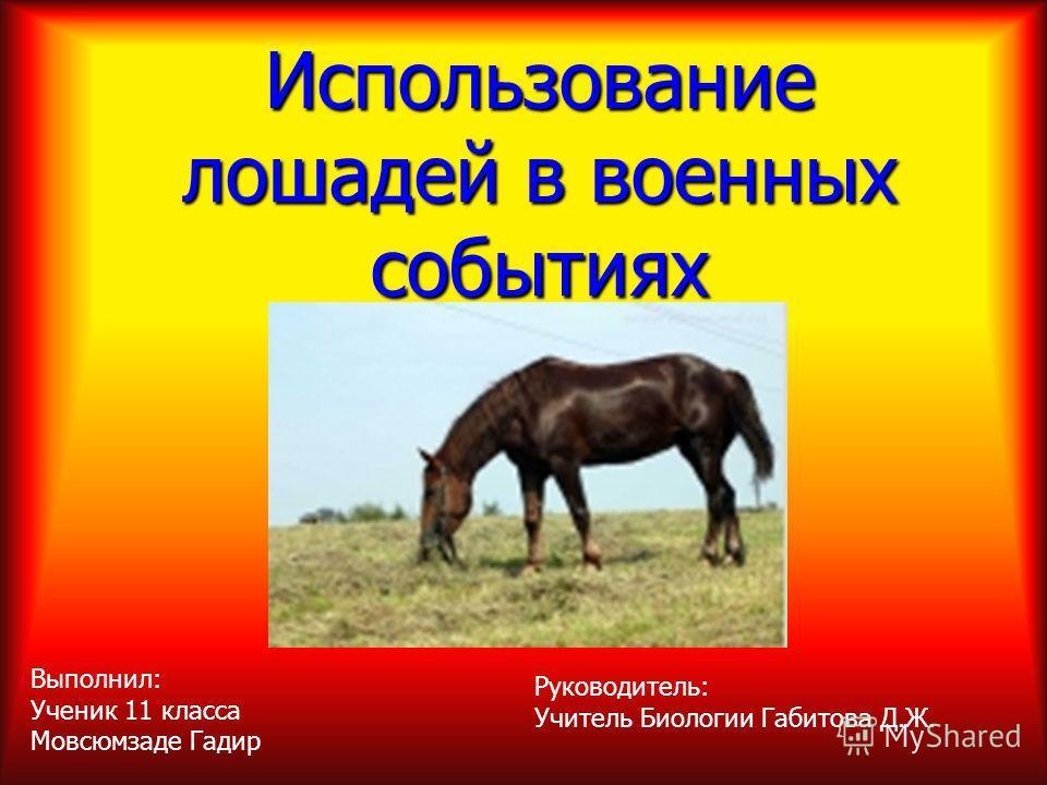 Использование лошадей в военных событиях Руководитель: Учитель Биологии Габитова Д.Ж. Выполнил: Ученик 11 класса Мовсюмзаде Гадир