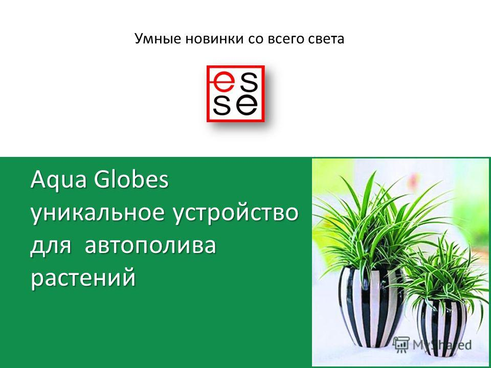 Aqua Globes уникальное устройство для автополива растений Умные новинки со всего света