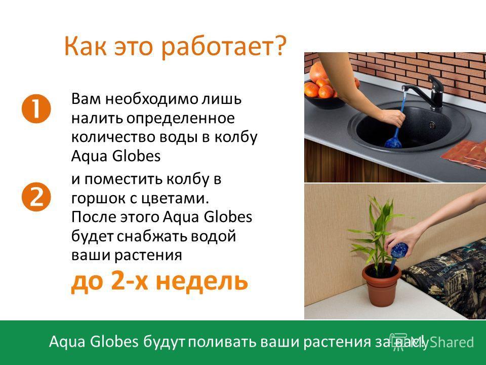 Aqua Globes будут поливать ваши растения за вас! Как это работает? Вам необходимо лишь налить определенное количество воды в колбу Aqua Globes и поместить колбу в горшок с цветами. После этого Aqua Globes будет снабжать водой ваши растения до 2-х нед