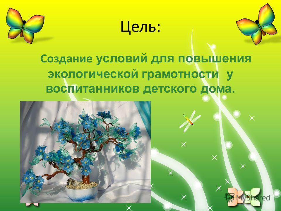 Цель: Создание условий для повышения экологической грамотности у воспитанников детского дома.
