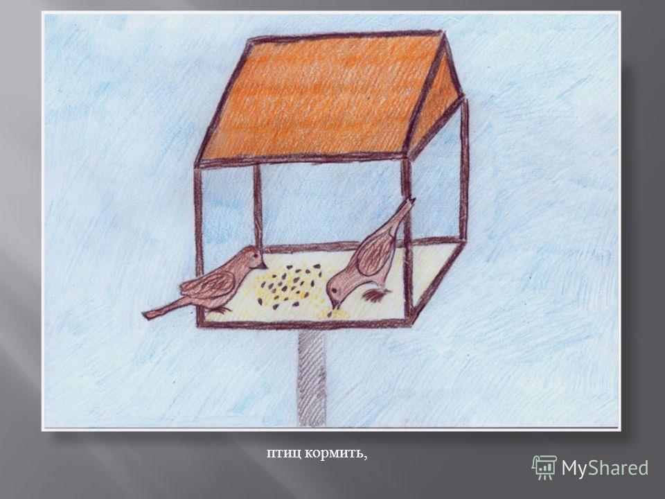 птиц кормить,