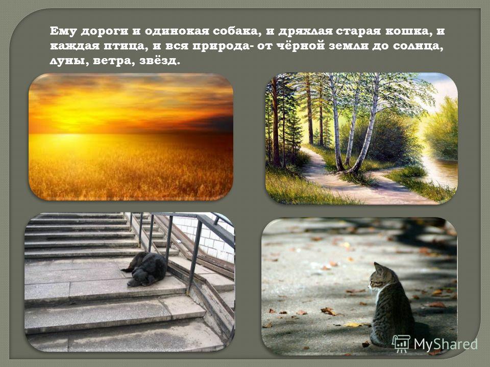 Ему дороги и одинокая собака, и дряхлая старая кошка, и каждая птица, и вся природа- от чёрной земли до солнца, луны, ветра, звёзд.