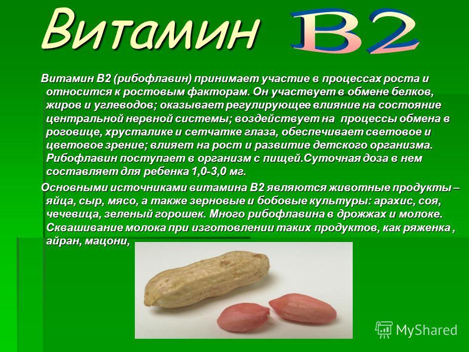 Витамин Витамин Витамин В2 (рибофлавин) принимает участие в процессах роста и относится к ростовым факторам. Он участвует в обмене белков, жиров и углеводов; оказывает регулирующее влияние на состояние центральной нервной системы; воздействует на про