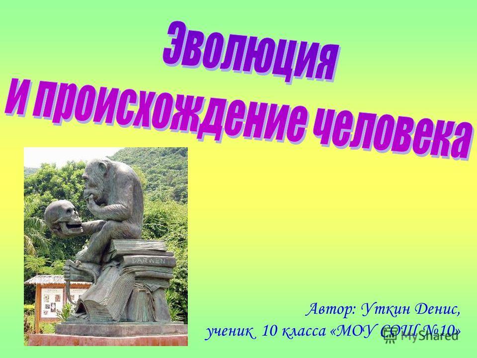 Автор: Уткин Денис, ученик 10 класса «МОУ СОШ 10»