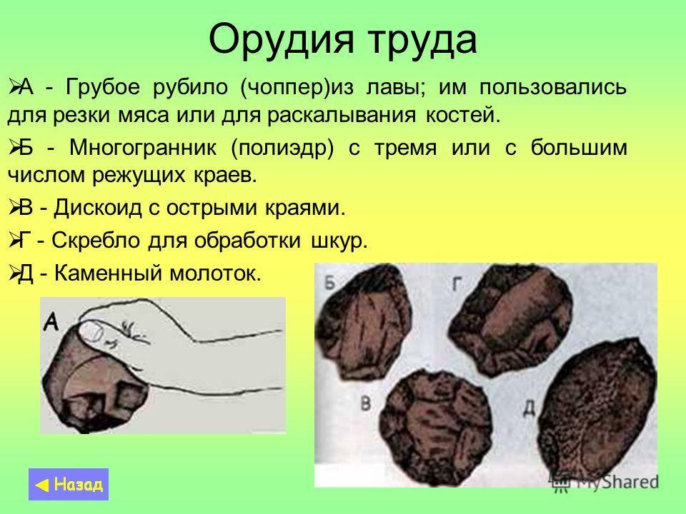 Орудия труда А - Грубое рубило (чоппер)из лавы; им пользовались для резки мяса или для раскалывания костей. Б - Многогранник (полиэдр) с тремя или с большим числом режущих краев. В - Дискоид с острыми краями. Г - Скребло для обработки шкур. Д - Камен