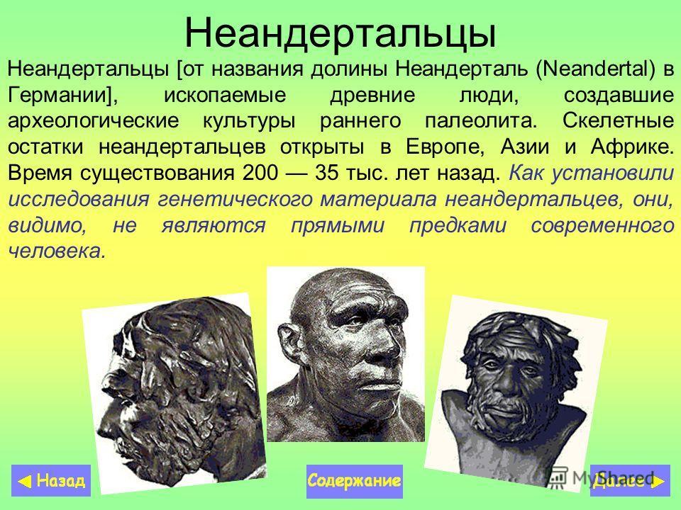 Неандертальцы Неандертальцы [от названия долины Неандерталь (Neandertal) в Германии], ископаемые древние люди, создавшие археологические культуры раннего палеолита. Скелетные остатки неандертальцев открыты в Европе, Азии и Африке. Время существования