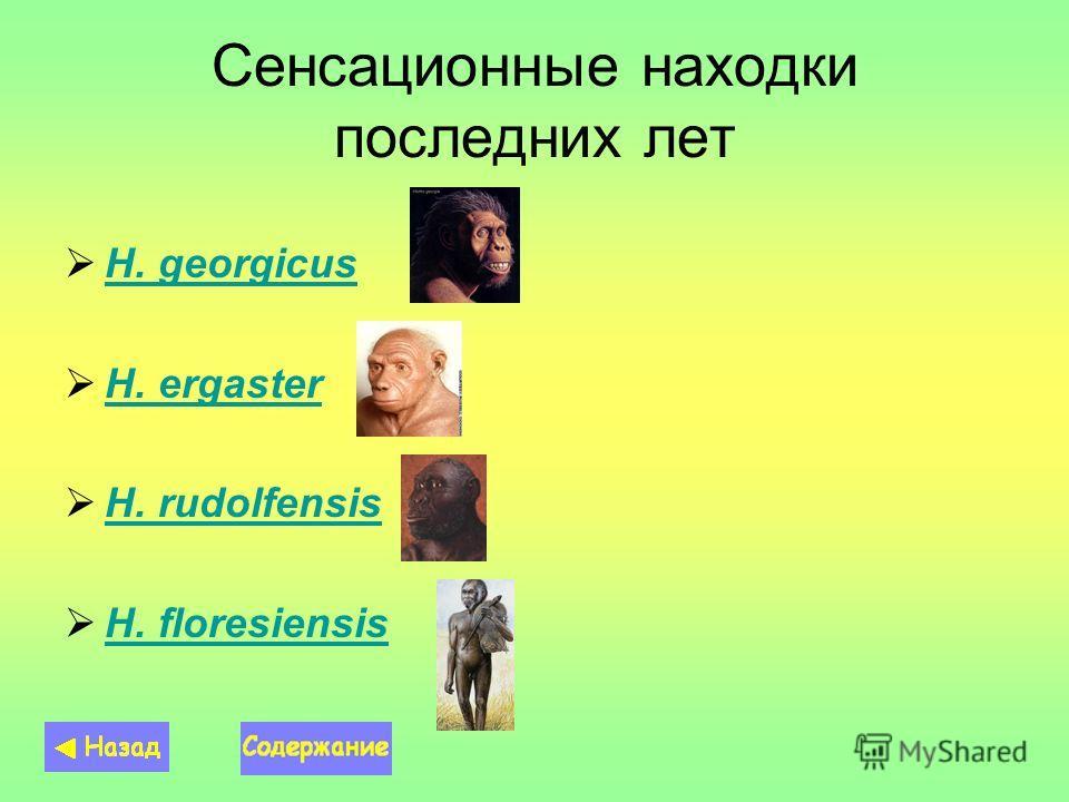 Сенсационные находки последних лет H. georgicus H. ergaster H. ergaster H. rudolfensis H. rudolfensis H. floresiensis