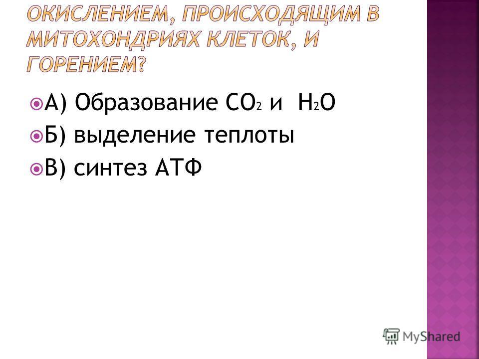 А) Образование CO 2 и H 2 O Б) выделение теплоты В) синтез АТФ