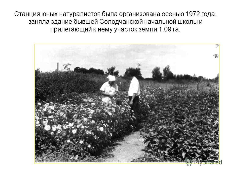 Станция юных натуралистов была организована осенью 1972 года, заняла здание бывшей Солодчанской начальной школы и прилегающий к нему участок земли 1,09 га.