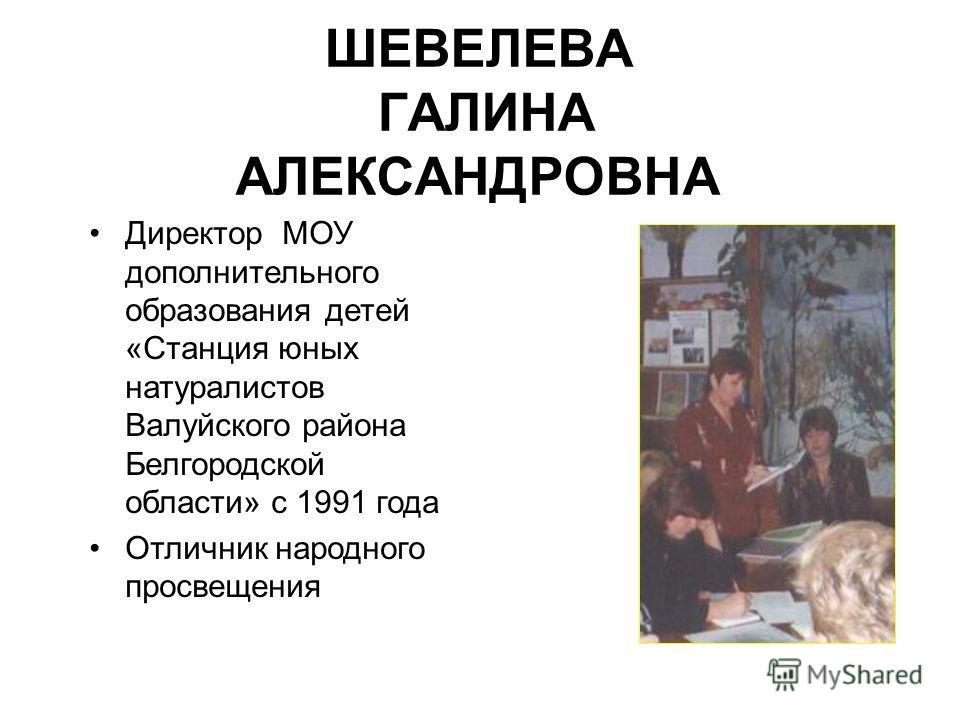 ШЕВЕЛЕВА ГАЛИНА АЛЕКСАНДРОВНА Директор МОУ дополнительного образования детей «Станция юных натуралистов Валуйского района Белгородской области» с 1991 года Отличник народного просвещения