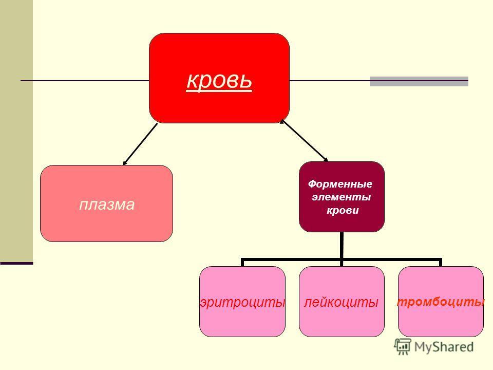 кровь Форменные элементы крови эритроциты лейкоциты тромбоциты плазма