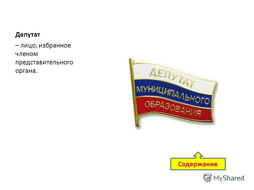 Депутат – лицо, избранное членом представительного органа. Содержание
