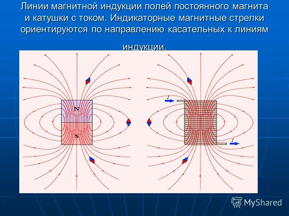 Линии магнитной индукции полей постоянного магнита и катушки с током. Индикаторные магнитные стрелки ориентируются по направлению касательных к линиям индукции.