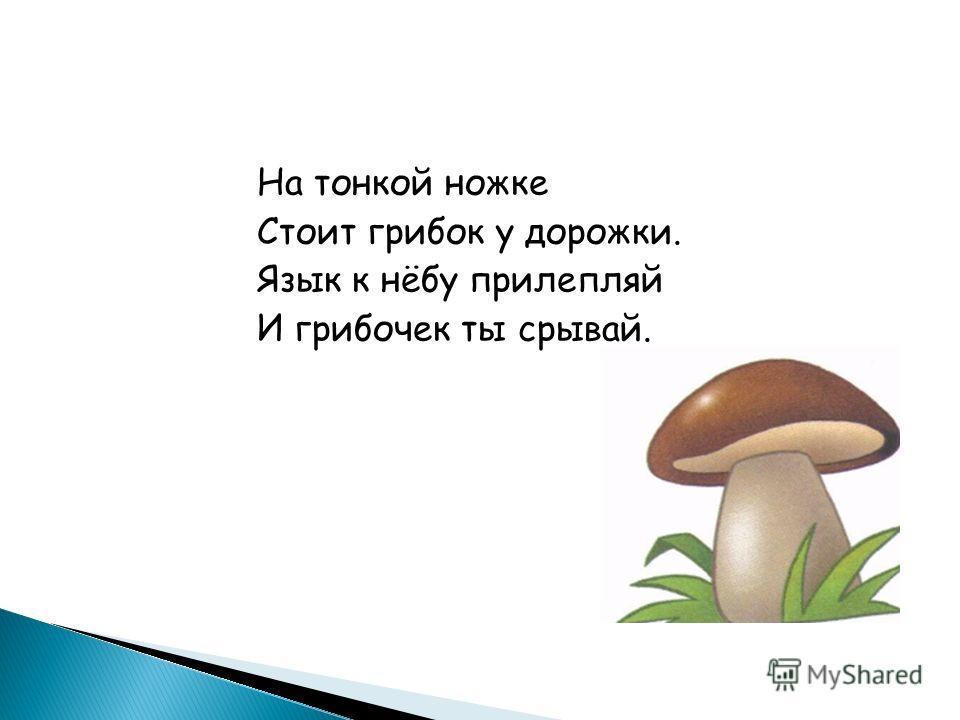 На тонкой ножке Стоит грибок у дорожки. Язык к нёбу прилепляй И грибочек ты срывай.