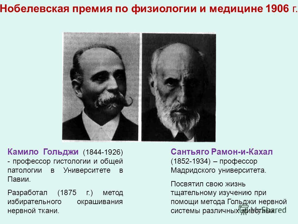 Камило Гольджи (1844-1926) - профессор гистологии и общей патологии в Университете в Павии. Разработал (1875 г.) метод избирательного окрашивания нервной ткани. Сантьяго Рамон-и-Кахал (1852-1934) – профессор Мадридского университета. Посвятил свою жи