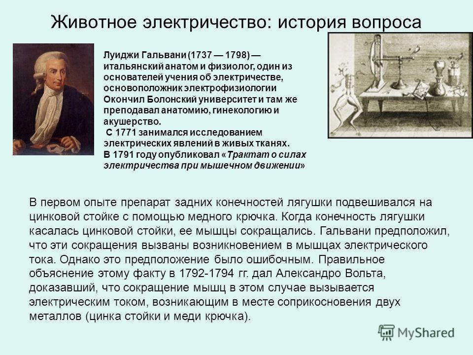 Животное электричество: история вопроса Луиджи Гальвани (1737 1798) итальянский анатом и физиолог, один из основателей учения об электричестве, основоположник электрофизиологии Окончил Болонский университет и там же преподавал анатомию, гинекологию и