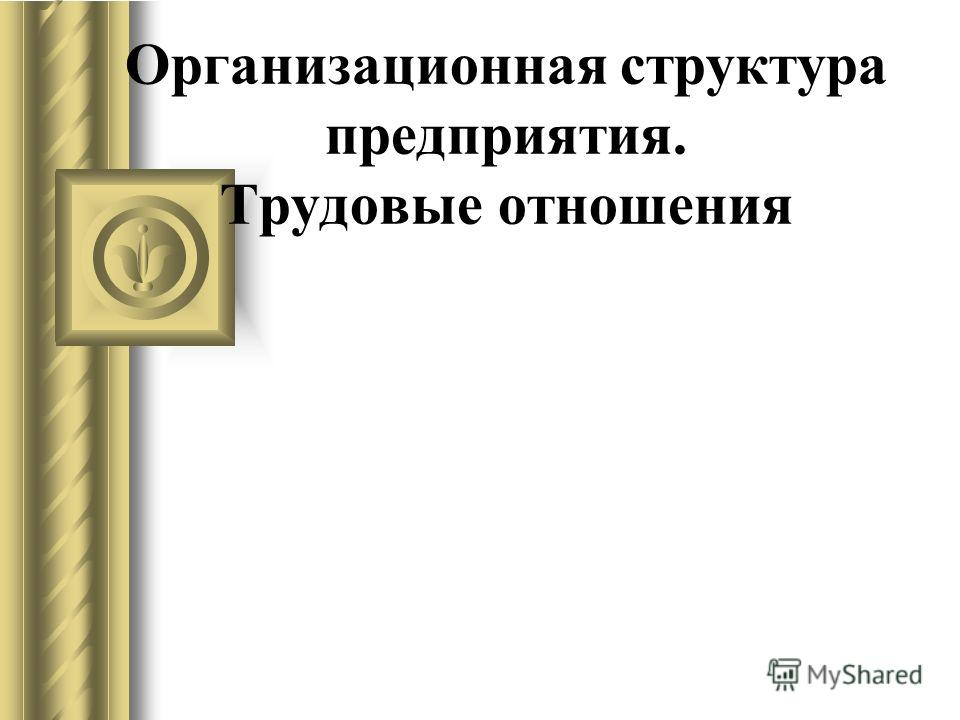 Организационная структура предприятия. Трудовые отношения
