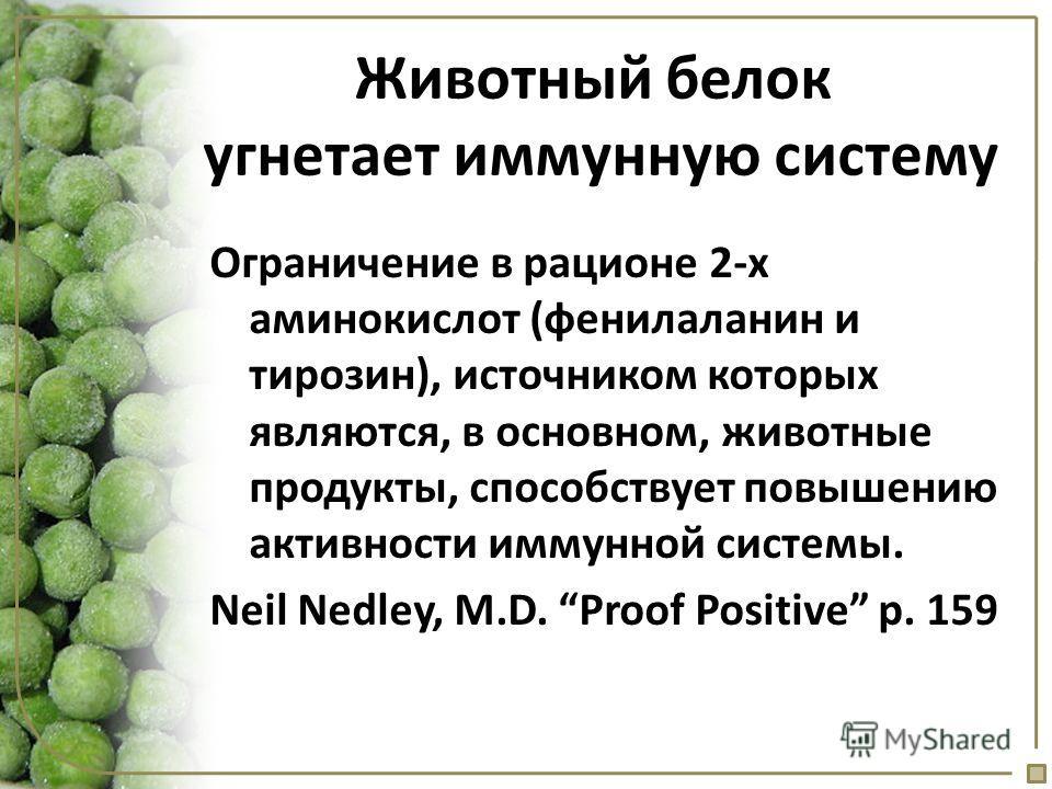 Животный белок угнетает иммунную систему Ограничение в рационе 2-х аминокислот (фенилаланин и тирозин), источником которых являются, в основном, животные продукты, способствует повышению активности иммунной системы. Neil Nedley, M.D. Proof Positive p