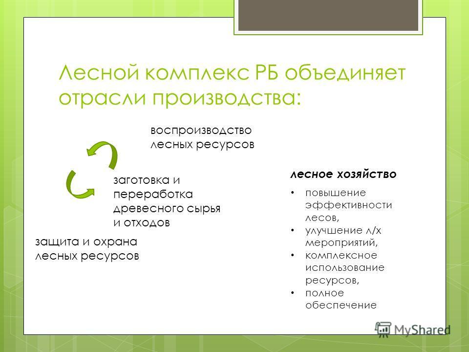 Лесной комплекс РБ объединяет отрасли производства: воспроизводство лесных ресурсов защита и охрана лесных ресурсов лесное хозяйство заготовка и переработка древесного сырья и отходов повышение эффективности лесов, улучшение л/х мероприятий, комплекс