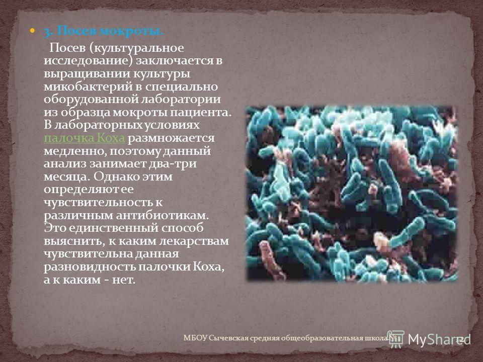 12 3. Посев мокроты. Посев (культуральное исследование) заключается в выращивании культуры микобактерий в специально оборудованной лаборатории из образца мокроты пациента. В лабораторных условиях палочка Коха размножается медленно, поэтому данный ана
