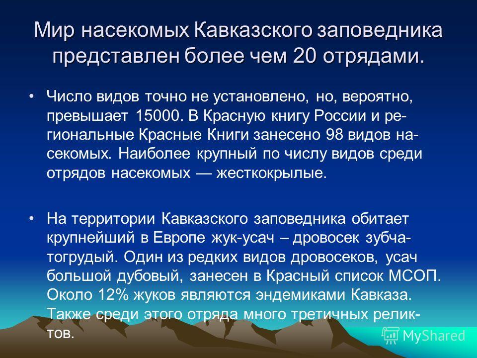 Мир насекомых Кавказского заповедника представлен более чем 20 отрядами. Число видов точно не установлено, но, вероятно, превышает 15000. В Красную книгу России и ре- гиональные Красные Книги занесено 98 видов на- секомых. Наиболее крупный по числу в