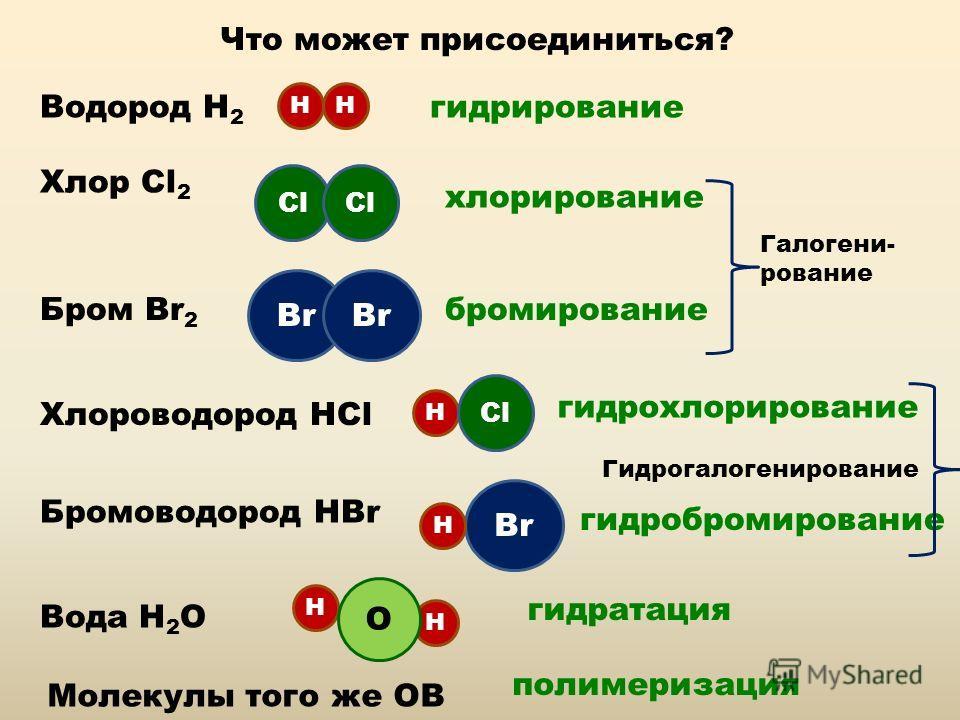 Что может присоединиться? Водород Н 2 НН гидрирование Хлор Cl 2 Бром Br 2 Хлороводород НCl Cl хлорирование Br бромирование Галогени- рование Бромоводород НBr Br Н Н Н Cl гидрохлорирование гидробромирование Гидрогалогенирование Н О Вода Н 2 О гидратац